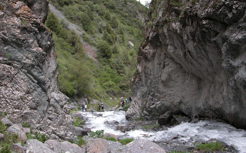 Alamedin Rapids